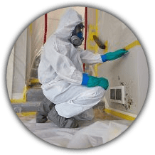 ServiceMaster-by-Replacements-Mold-Remediation
