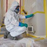 Mold-Remediation-in-Union-NJ
