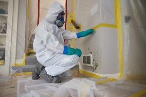 Mold-Remediation-in-Springfield-Township-NJ