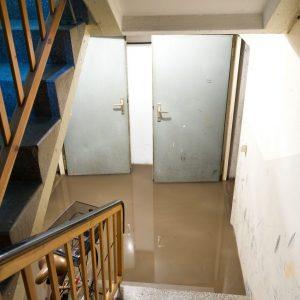 basement smells after flooding cranford nj